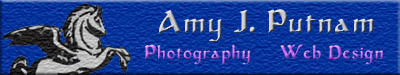 Amy J. Putnam- Photography/Web Design